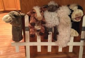 Animals of the Nativity